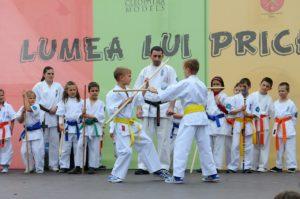Arts martiaux sport pour enfants