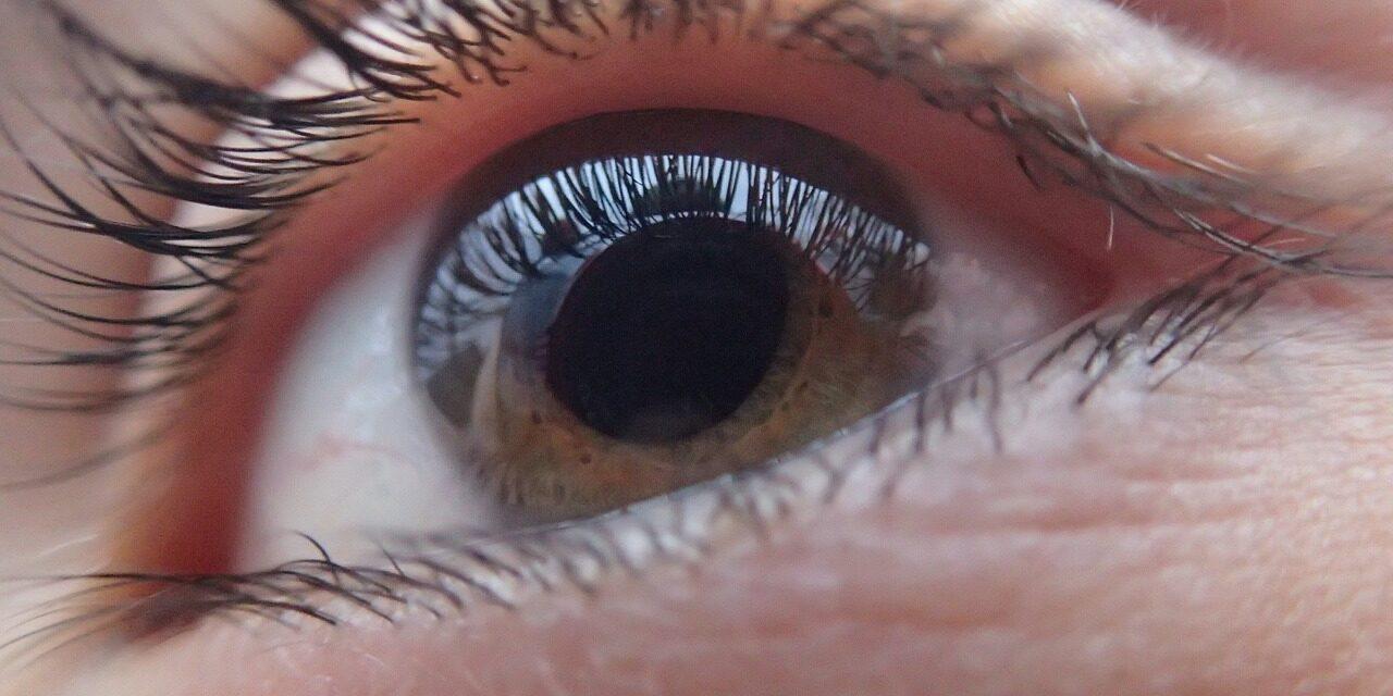 Une découverte révolutionnaire sur le glaucome pourrait déboucher sur de nouveaux traitements