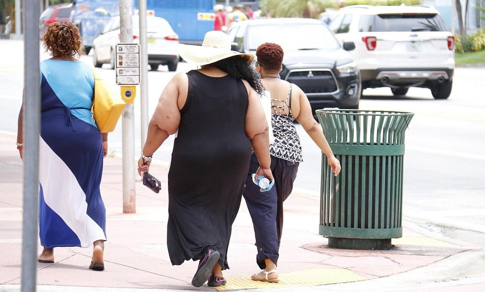 Obésité et CBD
